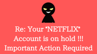 Re: Your *NETFLIX* Account is on hold !!! Important Action Requiredはフィッシング詐欺