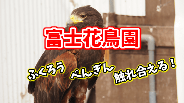 富士花鳥園 観光 クーポン 割引 アクセス 営業時間 入園料金